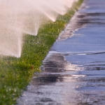 irrigation runoff