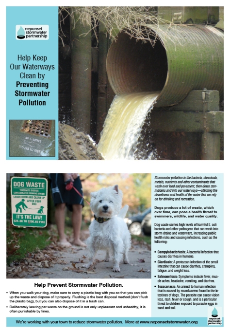 RESIDENTIAL MAILER DOG WASTE WEB IMAGE